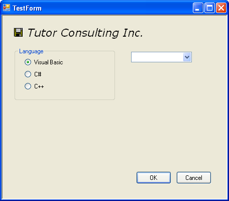 Adjusting the Windows Form properties