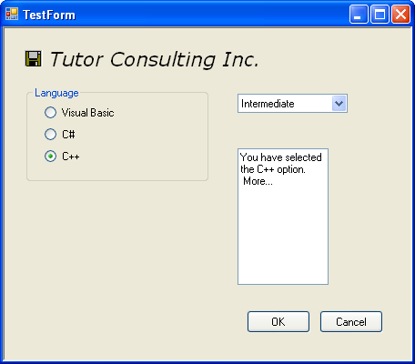 Windows Form with textbox control in action